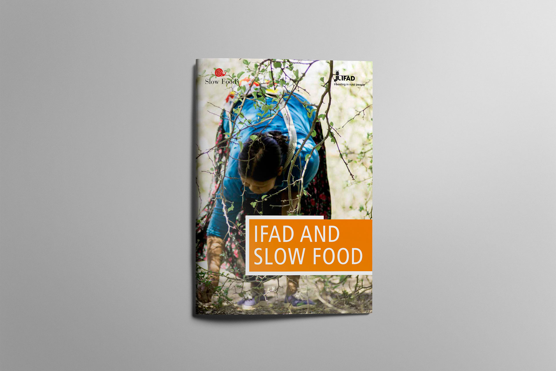 Ifad and Slow Food Booklet